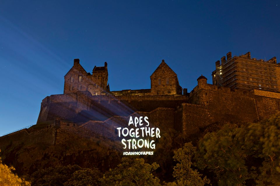 Apes. Stronger. Together. Guerilla-style projection on Edinburgh Castle to mark the release of DAWN OF THE PLANET OF THE APES. Projection commissioned by psLIVE. Edinburgh, Scotland, UK. 17th July 2014 © Gary Doak Photography