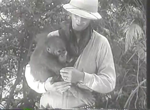 Hero, Robert Hunter, and his orangutan Borneo Joe in Beast of Borneo. Borneo Joe acts more human than the film's villainous evolutionary biologist.
