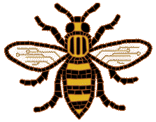 bee-no-text-header